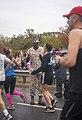 2015 Marine Corps Marathon 151025-M-QS647-176.jpg