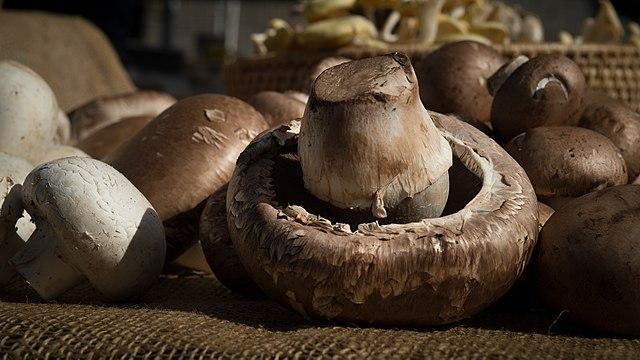 image of crimini mushroom