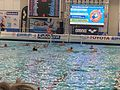 2016 Water Polo Olympic Qialification tournament NED-FRA 22.jpeg