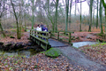 2018-12-22-December-watercolors.-Hike-to-the-Ratingen-forest. File-10.png