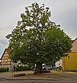 2020-08-09 ND Winterlinde in Nordshausen, Hessen 01.jpg