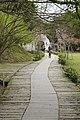 367, Taiwan, 苗栗縣三義鄉勝興村 - panoramio (18).jpg