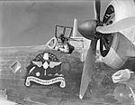 37 Squadron Wellington nose art Egypt WWII IWM CM 407.jpg