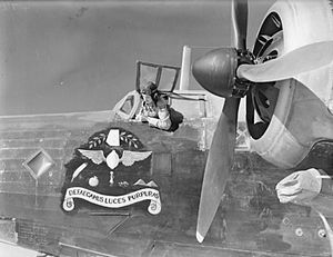 No. 37 Squadron RAF - 37 Squadron Wellington in Egypt