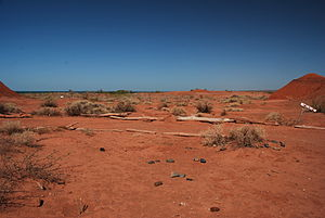 Argentine Monte - Desert near Barreales lake, Neuquén Province