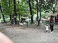 55049 Viareggio, Province of Lucca, Italy - panoramio (5).jpg