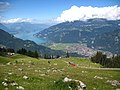 5635 - Schynige Platte - View of Interlaken and Thunersee.JPG