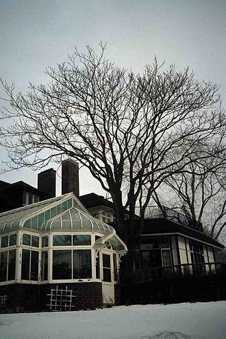 University Of Toronto President's Estate - Image: 93 Highland conservatory