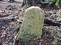 A44 milestone - geograph.org.uk - 1780649.jpg