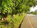 AIT - panoramio - Seksan Phonsuwan (47).jpg