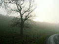 A December view of Woodnook Valley, Little Ponton, Lincolnshire, England 12.JPG