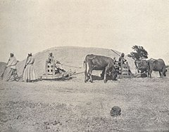 A Village Scene in Egypt. (1918) - TIMEA.jpg