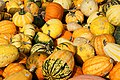 A selection of cucurbits from Alkmaar, The Netherlands 04.jpg