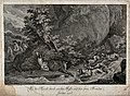 A stag is chased through a river by a pack of dogs while mou Wellcome V0021168.jpg