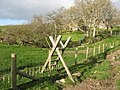A stile designed for people with especially long legs - geograph.org.uk - 610449.jpg