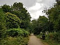 Abney Park – 20180710 112748 (42414424035).jpg