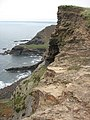 Above Pencannow Point - geograph.org.uk - 1559302.jpg