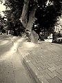 After 1201 - panoramio.jpg