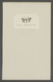 Aglaope - Print - Iconographia Zoologica - Special Collections University of Amsterdam - UBAINV0274 055 02 0005.tif