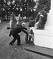 Airborne-herdenking Oosterbeek. Engelse gezant Sir Neville Butler legt krans, Bestanddeelnr 905-3115.jpg