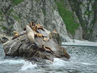 Afognak Island in Alaska, United States of America