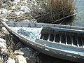 Albufera. Barca.JPG