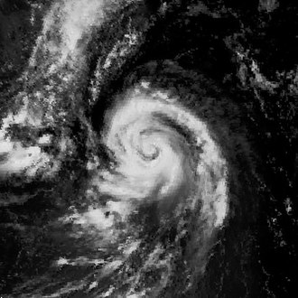 Typhoon Alex (1987) - Image: Alex 1987