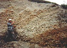 Alluvial Gravels at the Blue Ribbon Mine Alaska.jpg