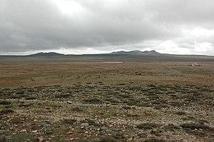 Ifrane National Park - Image: Altiplà d'Ifrane