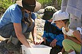 Alyson and kids look for inverts (7604663562).jpg
