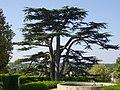 Amboise – château, jardins (06).jpg