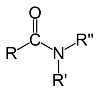 Amide functional group