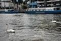 Amsterdam 20050827 (13) canal cruise.jpg