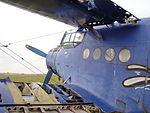 Antonov An-2 SP-ANG 09.JPG