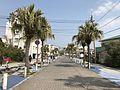 Aoshima-Ekimae-dori Street.jpg