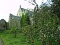 Apples at The Abbey - geograph.org.uk - 580561.jpg