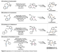 Applications of Carbon-Carbon Bond Activation in Total Synthesis.png