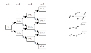 Lattice model (finance) method for evaluating stock options that divides time into discrete intervals