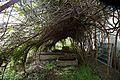 Arch trellis in Victorian walled garden at Quex House Birchington Kent England.jpg