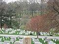 Arlington National Cemetery Headstones.jpg