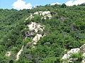 Ashiya Rock Garden18.jpg