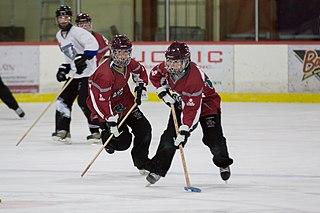 Ringette Team sport played on ice, on a gymnasium floor or on wheeled skates.