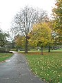 Autumn in Priory Park (3) - geograph.org.uk - 1558864.jpg