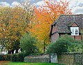 Autumn splendour in Waterstock - geograph.org.uk - 717157.jpg