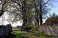 Avenue to Nantyreglwys, Llanboidy - geograph.org.uk - 1020105.jpg