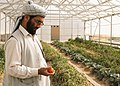 Back to the basics, ADT assesses Afghan demonstration farm 120903-A-GH622-007.jpg