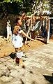 Baile del trompo al aire.jpg