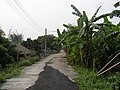 Ban Rung Daeng - panoramio - CHAMRAT CHAROENKHET (4).jpg
