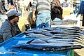 Bandar Abbas Fish Market 2020-01-22 13.jpg