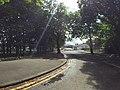Bangor, UK - panoramio (156).jpg